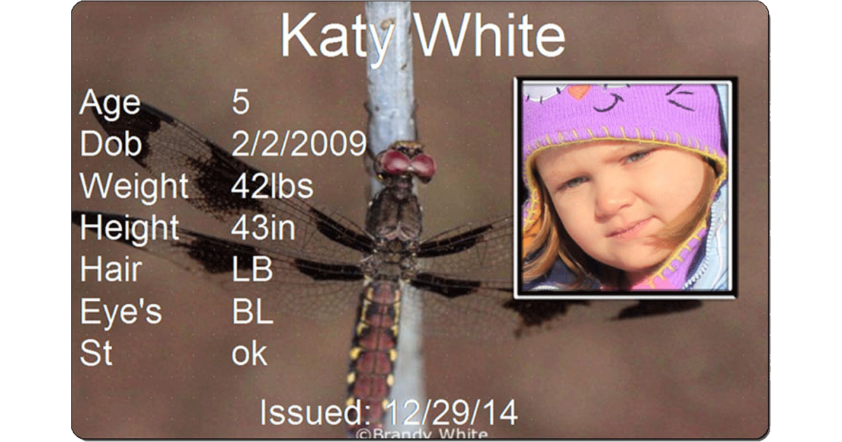 Dragonfly Child Id #childid