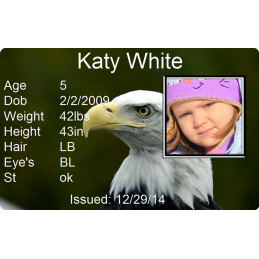 Bald Eagle Child Id