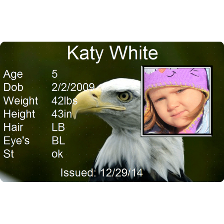 Bald Eagle Child Id #identakid